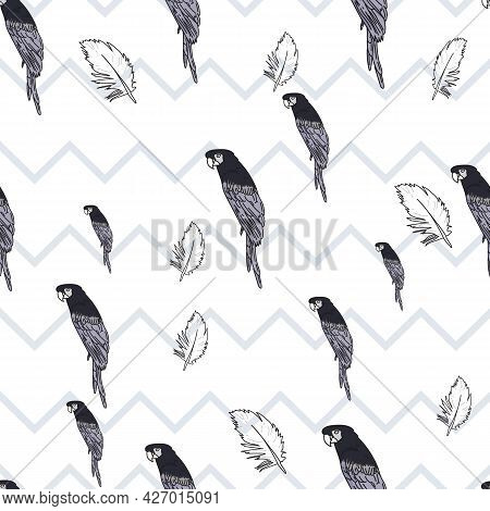 Vector White Background Tropical Birds, Parrots, Macaw, Exotic Cockatoo Birds. Seamless Pattern Back