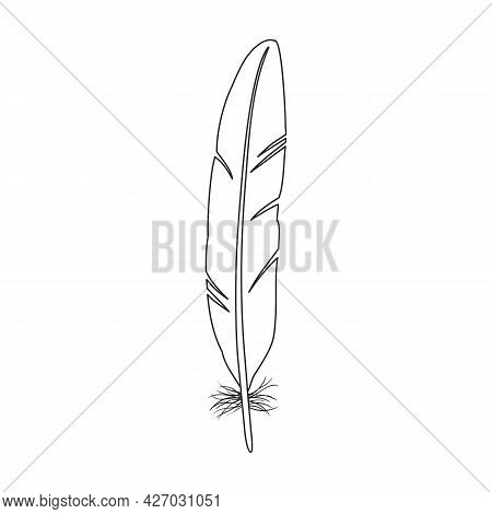 Feather Bird Vector Outline Icon. Vector Illustration Quill On White Background. Isolated Outline Il