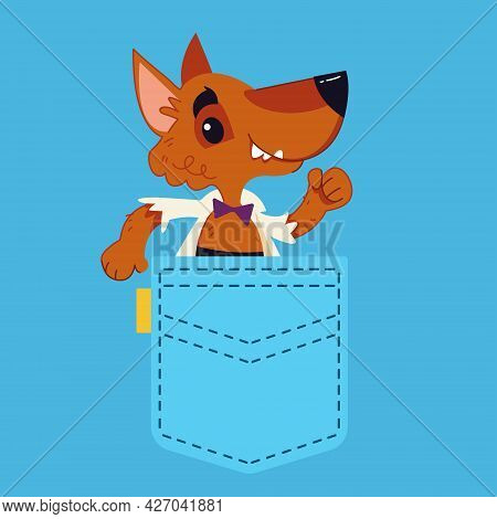 A Blue Jeans Pocket From Which A Ginger Dog Peeps. Dog In Your Pocket. Vector Illustration In Cartoo