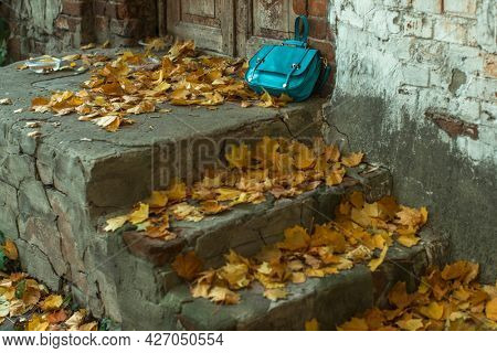 A Woman's Purse lies on the autumn porch covered with yellow leaves.