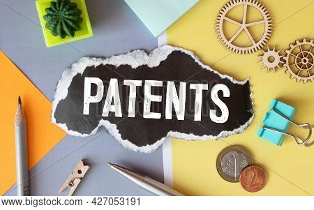 Fake Dictionary, Dictionary Definition Of The Word Patent