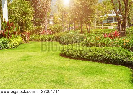 The Evening Sun Shines Into The Front Yard. Green Lawn. Backyard For Background. Landscaped Garden.