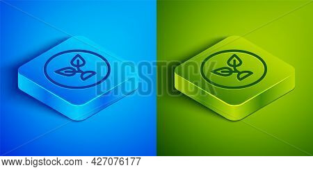 Isometric Line Plant Based Icon Isolated On Blue And Green Background. Square Button. Vector