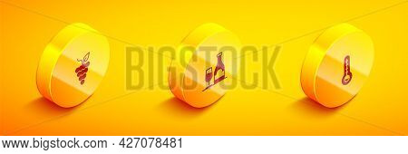Set Isometric Bunch Of Grapes, Wine Bottle With Glass And Meteorology Thermometer Icon. Vector