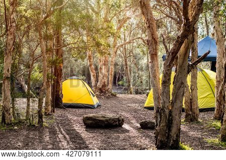 Two Yellow Tentss With Gazebo Canopy Shelter At The Campsite Surrounding By Nature On The River Bank
