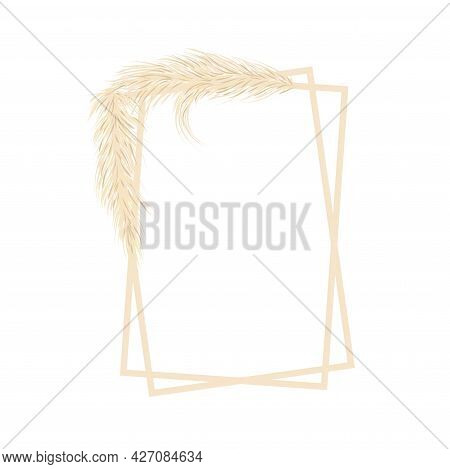 Frame With Dry Pampas Grass. Boho Fall Illustration Of Dried Plant For Decoration, Frame, Backdrop,