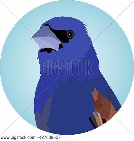 Portrait Of A Blue Grosbeak (passerina Caerulea), North American Passerine Bird, Male - Vector Illus
