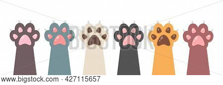 Multicolored Cats Paws Isolated On White Background. Cute Feline Paw In Flat Style. Animal Paw. Vect