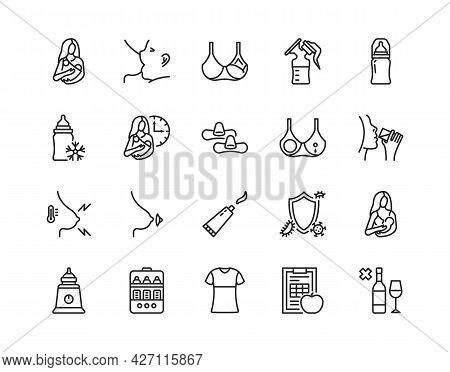 Breastfeeding Flat Line Icon Set. Vector Illustration Lactation. Included Nipple Shield, Breast Pads