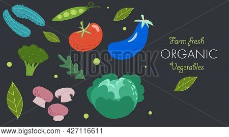 Creative Banner With Fresh Vegetables. Trendy Flat Doodle Template. Tomato, Cucumbers, Eggplant, Mus
