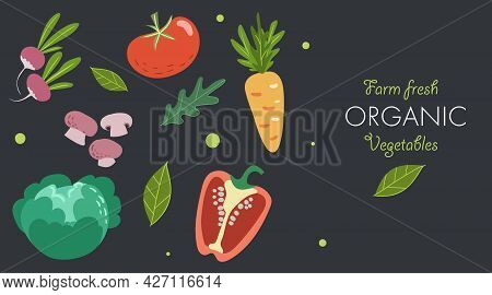 Creative Banner With Fresh Vegetables. Trendy Flat Doodle Template. Tomato, Mushrooms, Cabbage, Pepp