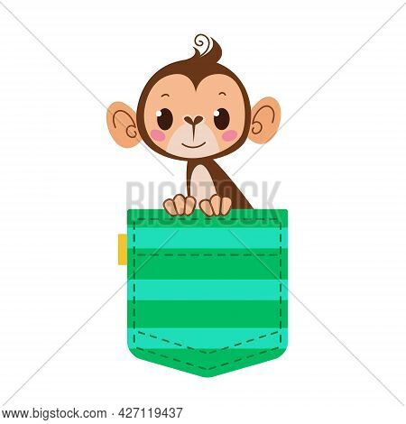 Monkey Monkey In Your Pocket. A Green Striped Pocket With A Pet. Cartoon Character. Vector Illustrat