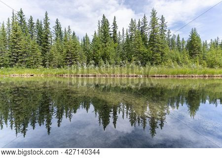 Nature Scenery With Lush Green Coniferous Forest Mirroring In Water Surface In Front Of It, Shot In