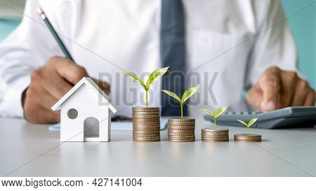 Trees Growing On A Pile Of Coins, Mortgage Concept, Mortgage, Real Estate, And Mortgage Loans
