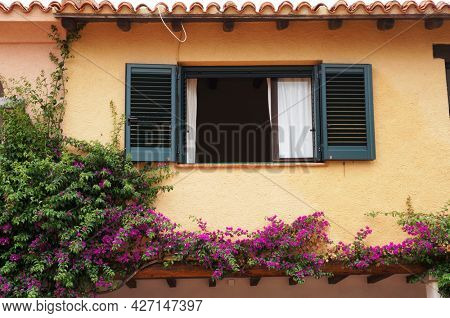 Window with green sun blinds and plant blooming with pink flowers on yellow wall in Loiri Porto San Paolo, Sardinia, Italy.