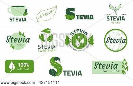 Stevia Label. Stickers Of Substitute Sweetener. Sugar Free Organic Product For Dietary. Extract Of L