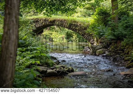 Historic Stone Bridge Over Stream In Summer Forest - Czech Republic, Europe