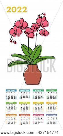 Calendar 2022. Potted Orchid Sketch. Vector Indoor Flower In A Pot. Doodle Color Illustration Of A P