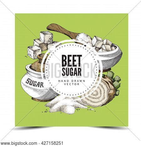 Hand Drawn Background With Round Label, Place For Brand And Beet Sugar. Vector Illustration Of Sugar