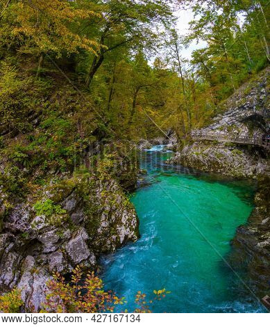 Sun illuminates quiet backwater on a mountain river. On the slopes of the gorge laid wooden walkways with railings. Vintgar gorge. Slovenia. The concept of active and photo tourism