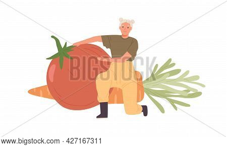 Happy Farmer With Big Farm Vegetables. Tiny Person Proud Of Good Harvest. Woman Showing Huge Tomato