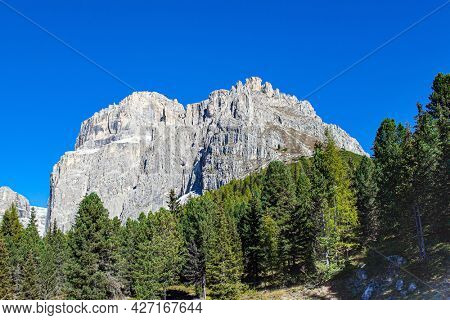 Walk in the picturesque Dolomites. Europe. The mountains are surrounded by dense coniferous forests. Sunny autumn day