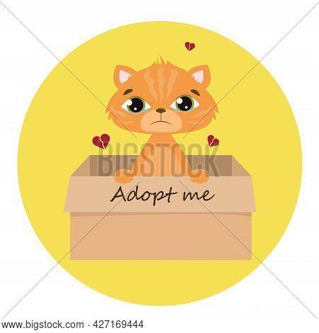 Accept Me. Vector Ginger Cat Inside An Open Cardboard Box. Ready For A Hug. The Mongrel Kitten Is Cr