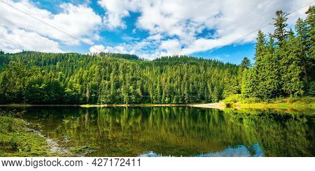 Lake Among Spruce Forest. Trees Reflecting On The Water Surface. Wonderful Summer Scenery On A Brigh