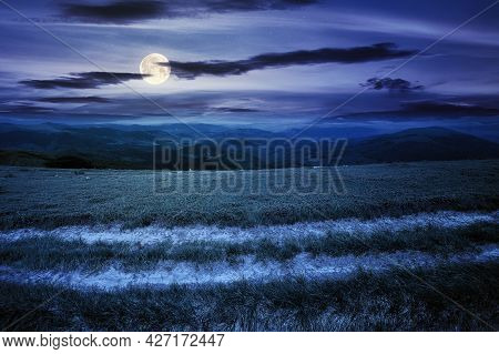 Country Road Through Alpine Meadow At Night. Beautiful Nature Landscape In Summer. Scenery With Open