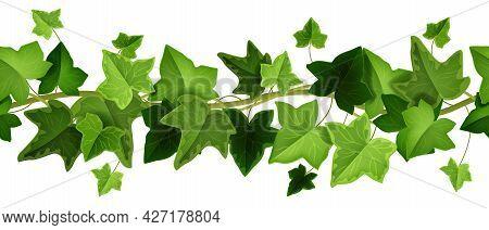 Spring Ivy Plant Vector Seamless Border, Climbing Vine Leaf Frame, Liana Creeper Twig Illustration O