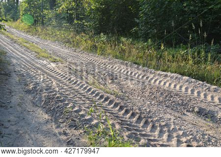 Truck Tracks In Forest Rural Road A Off Road