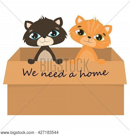 Vector Kittens Isolated On White Background. A Sad Gray And Red Stray Kitten In A Cardboard Box Begs