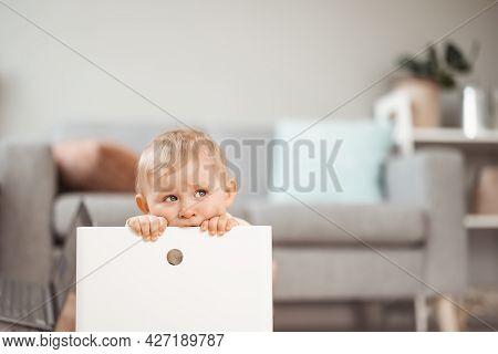 Cute Boy Sitting In The White Plastic Box