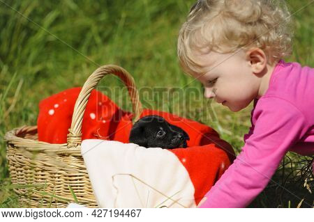 Girl And Puppy. Small Child And Small Black Puppy In A Basket. Children Love Their Dogs. Cute Puppy,
