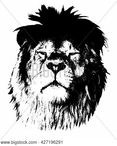 Portrait Of A Proud Lion. Graphics On A White Background. Illustration. Vector, Eps10.