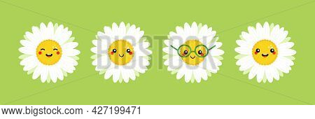 Camomile, Daisy Flowers Characters Set, Collection Cute Cartoon Style Icon, Illustration For Nature