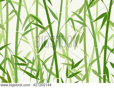 Green Bamboo Pattern. Bamboos Horizontal Seamless Background, Chinese Natur Vector Wallpaper, Asian