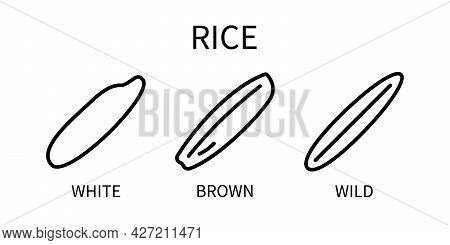 Line Icon Is White Wild Brown Rice In A Simple Style. Milk Of Vegetable Origin. Vector Sign In A Sim