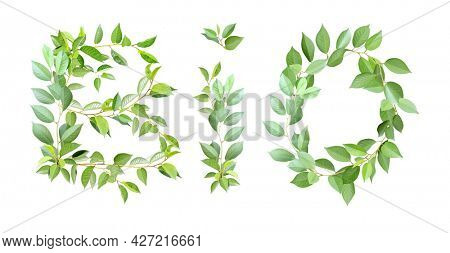 Bio and ecology concept. Word BIO made from branches with green leaves. Isolated on white background