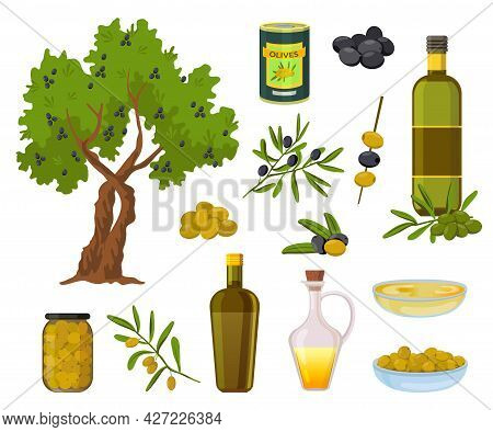 Cartoon Olive Products. Black And Green Olives In Jars, Healthy Virgin Oil In Bottles And Bowl. Oliv