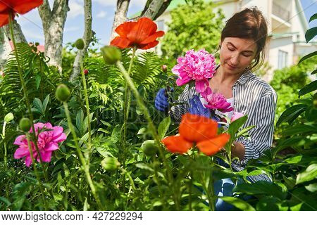 Woman Taking Care Of Flowerbed And Plants