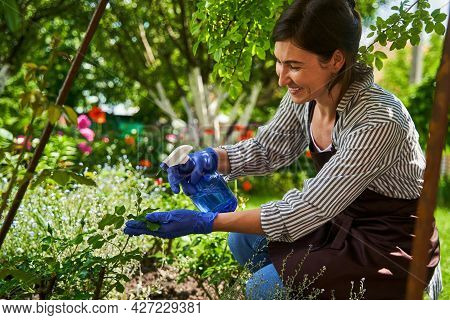 Woman Taking Care Of Garden And Flowerbed