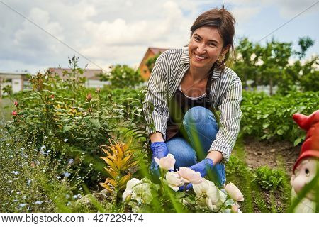 Smiling Female Person Taking Care Of Flowerbed