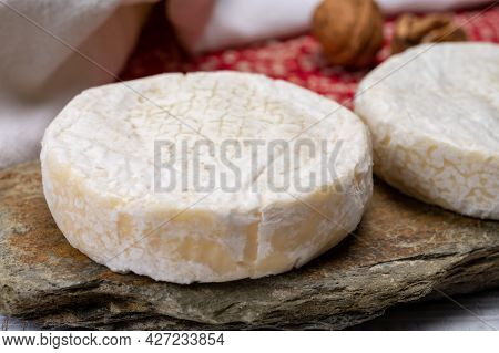Cheese Collection, Fresh White Soft Cow Cheese With Mold From Swiss