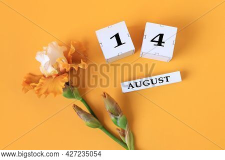 Calendar For August 14 : The Name Of The Month Of August In English, Cubes With The Number 14, Yello