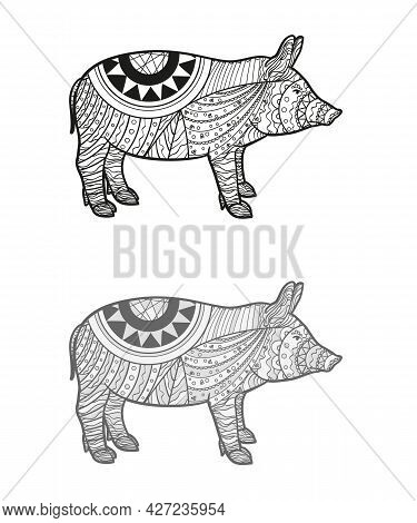 Hand Drawn Zen Pig With Abstract Patterns On Isolated Background. Design For Spiritual Relaxation Fo