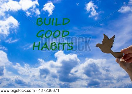 Build Good Habits Symbol. Businessman Hand Holding Wooden Bird On Cloud Blue Sky Background. Words '