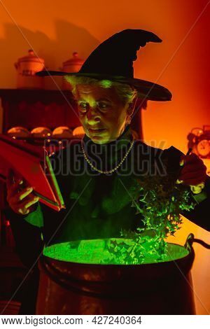 Older Woman Disguised As A Witch Reading Spells Online, Using A Digital Tablet And Preparing Magic P