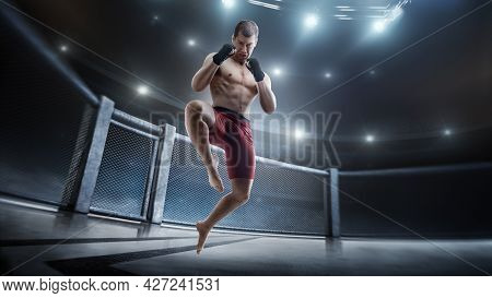 Jumping Knee Kick In The Octagon. Mma Cage. Male Fighter Jumping With A Knee Kick. Straight View. Sp