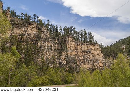 Black Hills National Forest, Sd, Usa - May 31, 2008: Wider View Of Beige-brown Cliff Set In Forest W